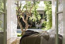 Homes - Bedrooms
