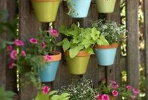 Green thumb projects / by Ashley Hoffman