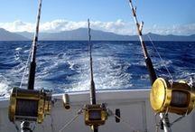 It's Fishing Time.. / by Tammy Sloan