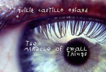 The Miracle of Small Things / Images & inspiration for THE MIRACLE OF SMALL THINGS, 13 stories about Luis Villalobos, a Mexican tax lawyer who is lured to Curaçao by the prospect of a fast track to the cusp of an already stellar career. But the paradise we expect is so rarely the paradise we find. (Truth Serum Press, Aug 2015) http://truthserumpress.net/2014/11/24/the-miracle-of-small-things/