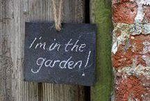 Mijn tuin - My garden / Photos of my garden taken at different times during the year. and decorated with hints to improve. - Fotos van mijn tuin op verschillende momenten van het jaar en opgefleurd met tips etc.
