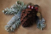 CELEBRATE THE HOLIDAYS / by paula leduc fine catering