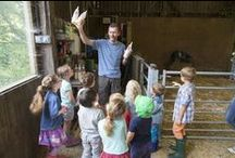 Tredethick Farm Cottages / The farm, our facilities, our animals and us!