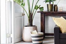 Cinnamon Space / Beautiful functional design
