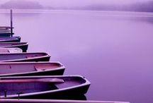 Purple | HUYS91