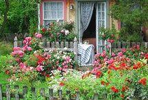 zahrada-kytky a tak