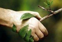 Eco Ideas / Ιδέες για δραστηριότητες και κατασκευές σχετικά με το περιβάλλον και την ανακύκλωση, σε συνεργασία με την Εφορεία Περιβάλλοντος...