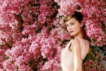 Audrey Hepburn Kleider / Schlichtheit, Eleganz und Charm so könnte man Audrey Hepburn Kleidungsstil beziechnen Das Aussehen und das Geschmack des Stars finden wir in der Kleidungsstil wieder, das nach ihr benannt wurde. Audrey Hepburn Kleider können wir 50er Kleider, Coctailkleider nennen, die sowohl zum Tanzen, Feiern aber auch im Alltag uns wunderschön begleiten können.