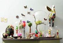 Cabinet de Curiosités & Curiosities & Museum