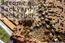 Backyard Beekeeping / Maintaining bees in the garden, backyard, and beyond.