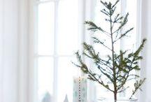 Sapins de Noël & Christmas Trees
