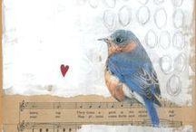 Oiseaux & Birds