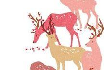 Daim et autres cervidés &  Deer