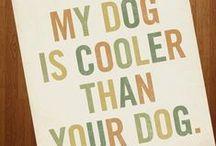 DIY Dogs