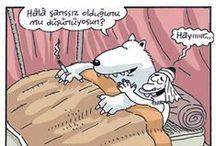 Kutup Ayıları, Bedeviler ve Develer / Kim Şanslı, Kim Şanssız?  En güzel kutup ayısı, bedevi ve deve karikatürleri.