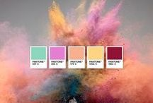 +d) color swatches