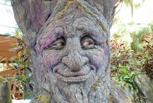 Interesting trees / by Judy Green