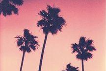 West Coast (USA)