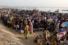 Senegal 2014 / 2014