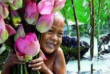 Lotus / Om mani padme hum (I salute the jewel in the lotus)