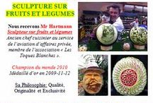 NOS ANIMATIONS 2014