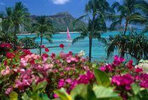 Hawaii: Sun, Beach, Ocean / Travelling to Oahu, Hawaii.