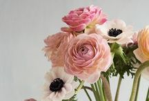 Wedding flowers inspiration / Handpicked ideas from me for stylish and classic wedding flowers.