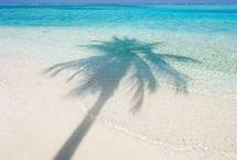 PLANET - {Maldives}