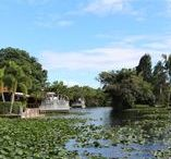 Everglades / Faszination der Everglades