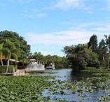 Everglades / Faszination der Everglades