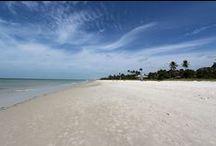 Florida Strände / Die schönsten Strände Florida