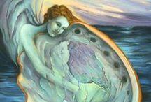 Abalone, my cradle