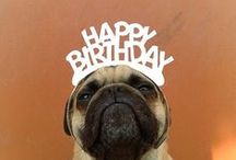 Birthday, День Рождения / день рождения, праздник, рождение, торт, пирожное, волшебство, радость, вкусно, счастье,birthday, holiday, birth, cake, cake, magic, joy, tasty, happiness,