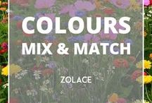 Colours Mix & Match / because everyone needs a bit of colours