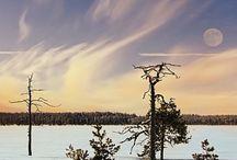 Suomi ♥