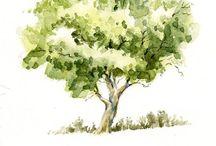 Aquarelle Tree
