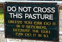 Those Unusual Signs