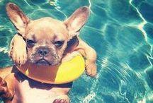 Relax - its summer!