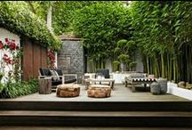 Terrace - Outdoor