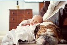 sleep & pillows