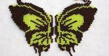 1.3. Motyle i inne robale / Motyle i inne owady
