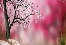 Rose Quartz / Rose Quartz gemstone colors, jewelry, and stunning rose quartz toned photos.