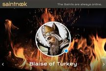 "Blaise of Turkey / saintnook.com/blaiseturkey |  In Greek paintings, Blaise is depicted as an old man with a pointed beard. In the West, he looks like a bishop; his emblem is an iron wool comb. Also represented as surrounded by wild beasts, or birds are bringing him food; Somtimes a swine's head at his feet. He occasionally holds in one hand, or has borne before him by a chorister, a lighted taper, typical of his being ""a burning and a shining light."""