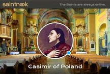 Casimir of Poland / saintnook.com/casimirofpoland | A selection of art, statues and images of St Casimir of Poland. He is usually portrayed as a crowned noble with lilies signifying his purity.