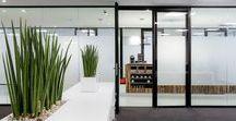 TecnoSlimII / Een heldere en transparante glaswand-oplossing met een uitstekend akoestisch resultaat, dat is TecnoSlim2. De glaspanelen worden vertikaal profielloos geplaatst, de spouw in de 74 mm dikke wand staat in voor een verhoogd geluidscomfort. Ook de gelijkliggende deuren zorgen er voor dat TecnoSlim2 op alle vlakken presteert. Ze kunnen kamerhoog worden uitgevoerd als flushglazen kaderdeuren of volle deuren, eventueel met verborgen scharnieren en valdorpel.