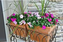 Outdoor Inspiration / Garden, landscape, patio and deck inspiration.  Outdoor living spaces.