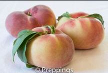 Stone Fruits / Search Preppings ingredient dictionary for a list of stone fruits.  Search by cooking uses, flavor profiles and similar ingredients to inspire culinary creativity.