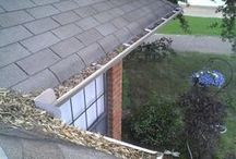 Gutter Cleaning maintenance / Recommended Gutter Cleaning Schedule and how to doing that....