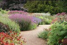 Garten Stimmung