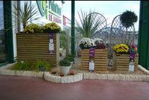 My Shop & Cie / podiums d animations au Point Vert Le Jardin de Ploudalmezeau ( 29830 )